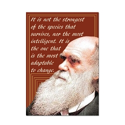 It is Not the Strongest That Survive ... - Charles Darwin Magnet