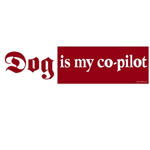 "Dog Is My Co-Pilot Bumper Sticker 11"" x 3"""