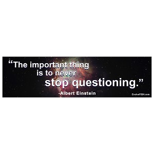 "Never Stop Questioning Bumper Sticker 11"" x 3"""
