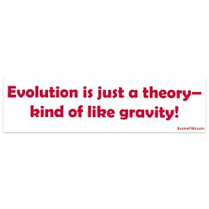 "Evolution Just A Theory Bumper Sticker 11"" x 3"""