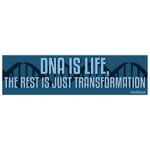 "DNA Is Life Bumper Sticker 11"" x 3"""