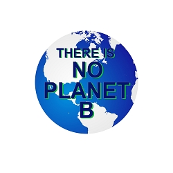 There is No Planet B Pinback Button - [1.25'' Diameter]