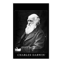 Charles Darwin Portrait Poster - [11