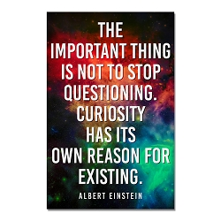 Important Thing is Not to Stop Questioning Poster  - [11'' x 17'']