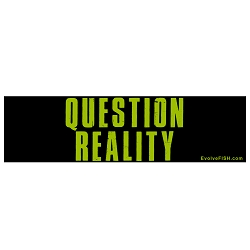 Question Reality Bumper Sticker - [11'' x 3'']