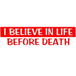 I Believe in Life Before Death Bumper Sticker - [11'' x 3'']