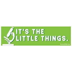 It's the Little Things Microscope Bumper Sticker - [11'' x 3'']