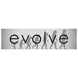 Evolution Line Bumper Sticker - [11'' x 3'']