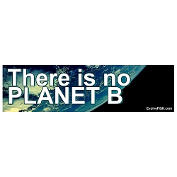 There is No Planet B Bumper Sticker - [11'' x 3'']