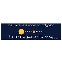 Universe is Under No Obligation to Make Sense Bumper Sticker - [11'' x 3'']