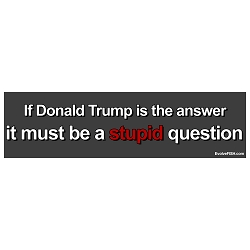 If Donald Trump is the Answer Must be a Stupid Question Bumper Sticker - [11'' x 3'']