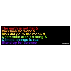 Earth is Not Flat Bumper Sticker 11