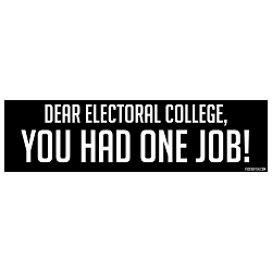 Dear Electoral College You Had One Job Bumper Sticker - [11'' x 3'']