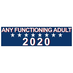 Any Functioning Adult 2020 Bumper Sticker - [11'' x 3'']