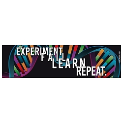 Experiment Fail Learn Repeat Bumper Sticker 11