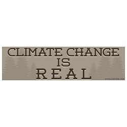 Climate Change is Real Bumper Sticker 11