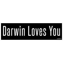 Darwin Loves You Bumper Sticker - [11'' x 3'']