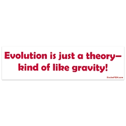 Evolution is Just a Theory Like Gravity Bumper Sticker - [11'' x 3'']