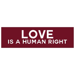 Love is a Human Right Bumper Sticker - [11'' x 3'']