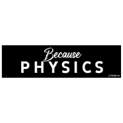 Because Physics Bumper Sticker - [11'' x 3'']