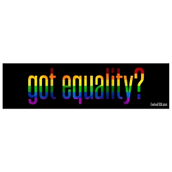 Got Equality Bumper Sticker 11