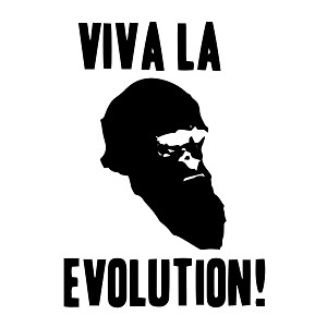 Viva la Evolution Vinyl Decal