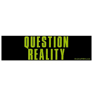 "Question Reality Bumper Sticker - [11"" x 3""]"