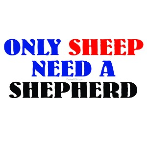 "Only Sheep Need a Shepherd Bumper Sticker 5"" x 2.25"""