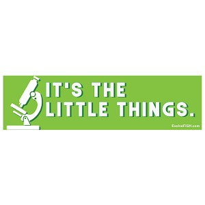 "It's the Little Things Microscope Bumper Sticker 11""x 3"""