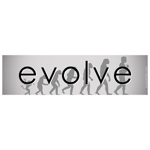 "Evolution Line Bumper Sticker - [11"" x 3""]"