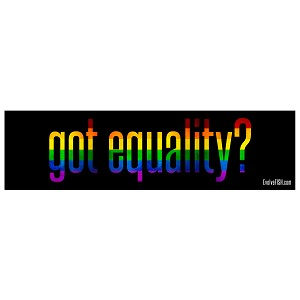 "Got Equality Bumper Sticker 11"" x 3"""