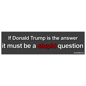 "If Donald Trump is the Answer Must be a Stupid Question Bumper Sticker 11"" x 3"""