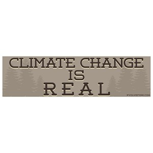 "Climate Change is Real Bumper Sticker - [11"" x 3""]"